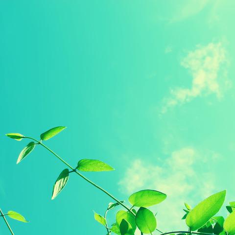 Spring_Sky-The-new-iPad-wallpaper-ilikewallpaper_com