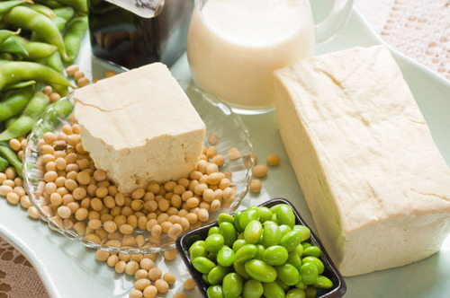 soy-products-500x500