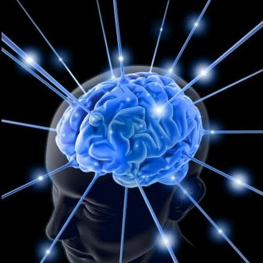 brain chemicals