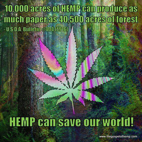 cannabis-saves-the-world