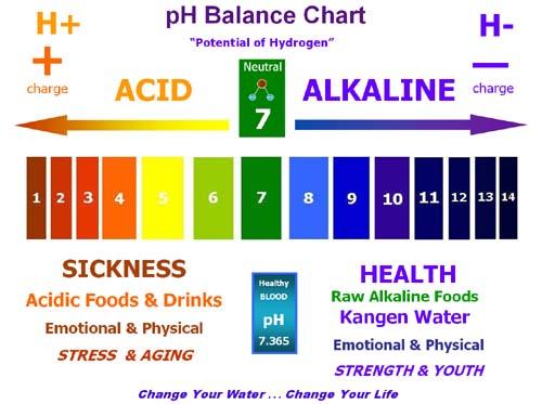 pH+chart+copy