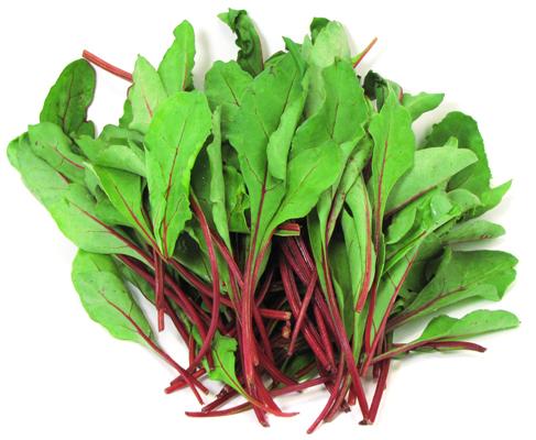 beet leaves 57360655-41f0-42b7-bdce-788eef0bf23a