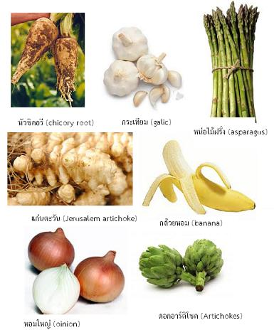 inulin-foods