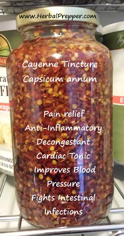 Cayenne-Tincture1