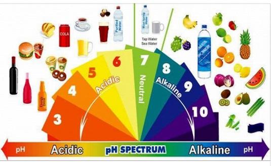 alkaline-fooda