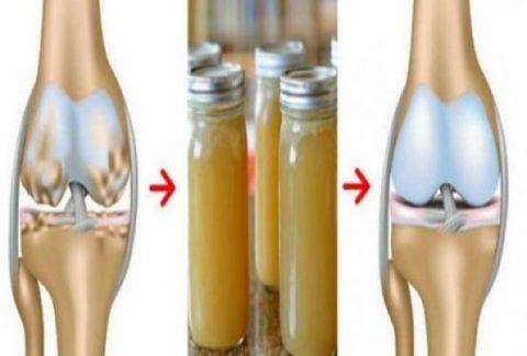 bones-knees-joints