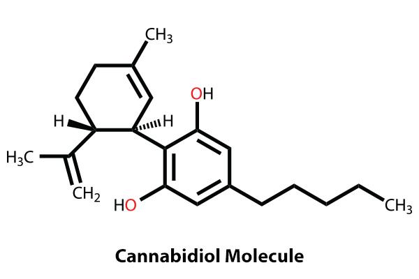 Cannabidiol-Molecule-600