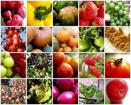 Възстановете здравето си с тези 7 важни хранителни вещества