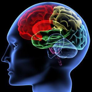 Фолиевата киселина и В12 стопяват симптомите на шизофренията
