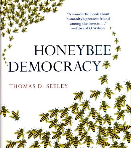 Танцуващите пчели използват демократичен процес в избора на нов дом