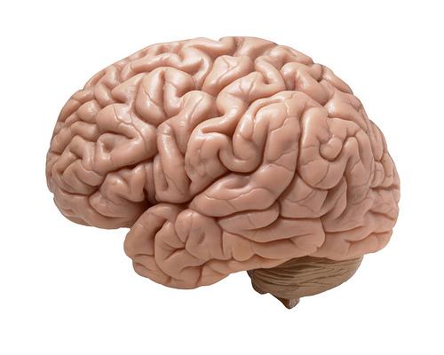 Пазете децата, популярен спорт уврежда мозъка