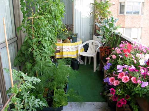Градинарството побеждава депресията