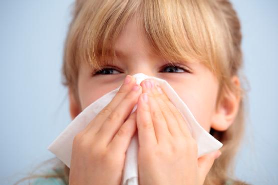 Свързват алергиите към хлебарки с астмата