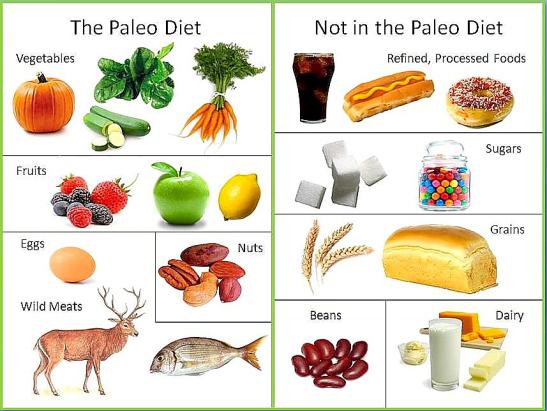 Голямата картина на здравето, палео диета