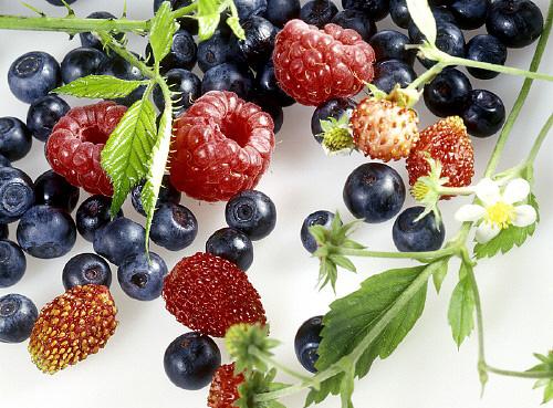 Храна за живот: 10 неща за храната при рак на гърдата