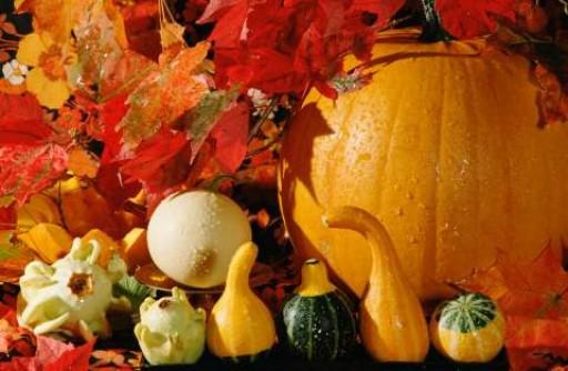 Да посрещнем есента като празник, седем идеи