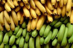 bananas green yellow