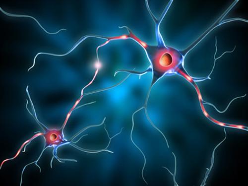 Нова тактика при епилепсия: победете възпалението