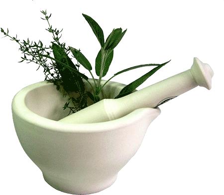 herbal-treatment-hsv-1