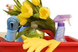 Лимонена свежест и чистота в кухнята