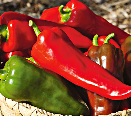 peppers 5274a