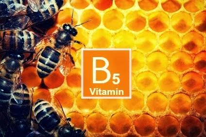 vitamin-B5-bees