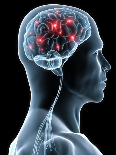 Неврорегенерацията: Самозалъгване или неочаквана нова реалност?
