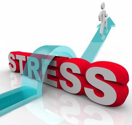Отговорът за справяне със стреса може да се крие в ново изследване