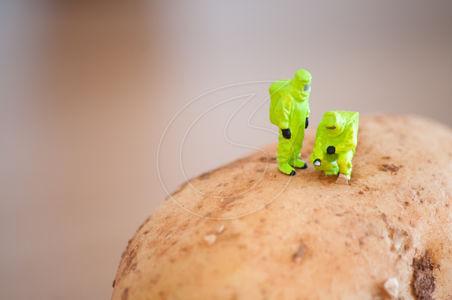 Внимание, нова франкенхрана излиза на пазара скоро: ГМО картофи