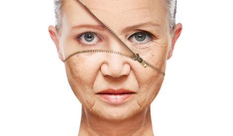 Сенолитиците, нов клас лекарства, забавят стареенето