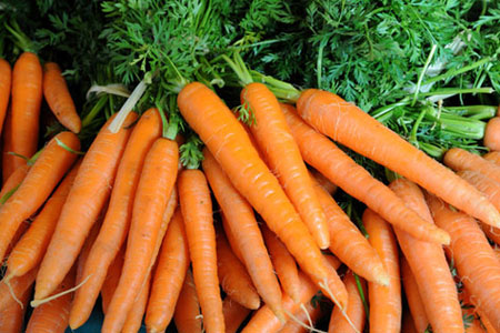 diet-with-carrots-pic