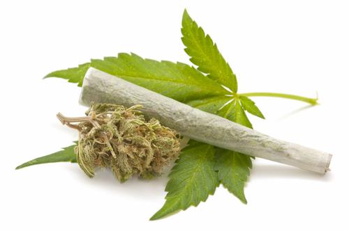 Край на заблудите за марихуаната: 5 мита за здравето развенчани