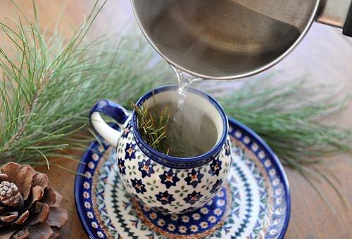 Чай от борови иглички: Заредете тялото си с този необичаен убиец на рака