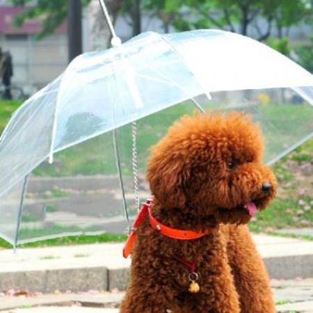 Лесни начини да се предпазим от топлинен удар това лято