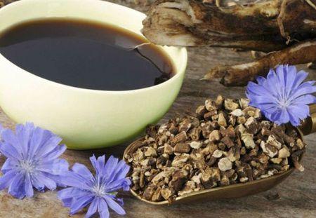 Цикория вместо кафе, чудесна билка за здравето