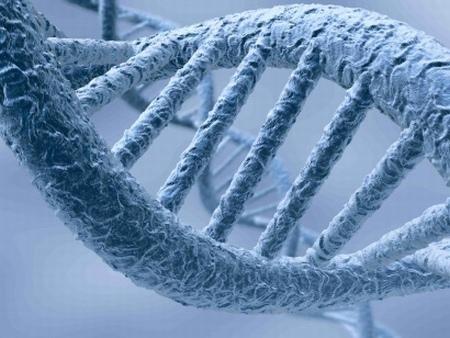 Бактерии на 3.5 милиона години крият тайната на младостта и още тайни