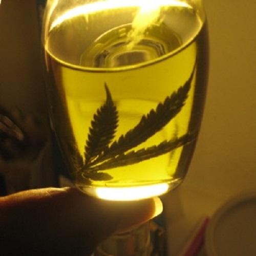 Рецептата на Рик Симсън за домашно приготвено масло от канабис като алтернатива на химиотерапията