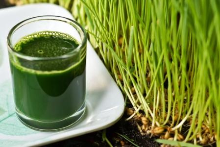 30 чудесни причини да добавите пшенична трева в деня си