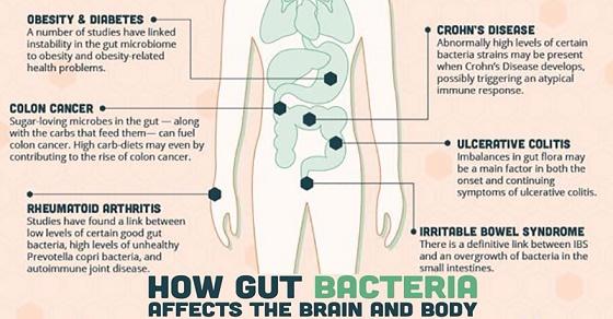 7 признака че тялото ви се нуждае от пробиотици
