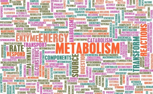 Седемте начина за оправяне на муден метаболизъм