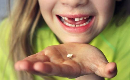 Лекарите насърчават родителите по света да запазват млечните зъбки на децата си