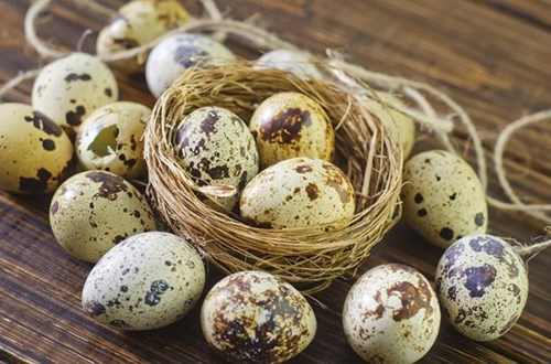 Тези яйца подобряват имунитета, регенерират организма и лекуват множество болести