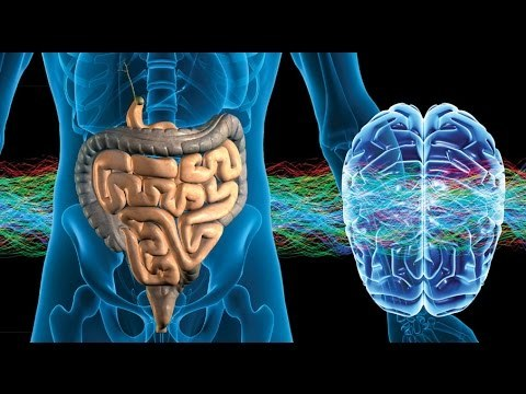 Изненадваща и лесно отстранима причина за Алцхаймер, Паркинсон и АЛС
