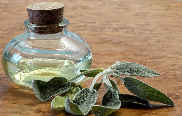 Тинктурата от салвия, безценна част от всяка домашна аптечка