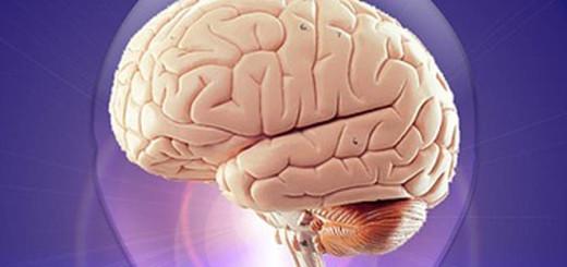 Най-важното вещество за мозъка, което вероятно пренебрегвате в храната си!