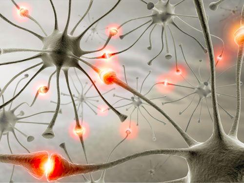 Спрете да забравяте, подобрете паметта си с тези естествени лекове!