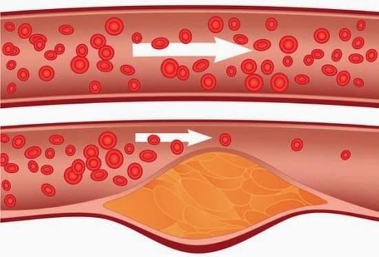 Народен лек: Няколко глътки на ден могат да ви спасят живота