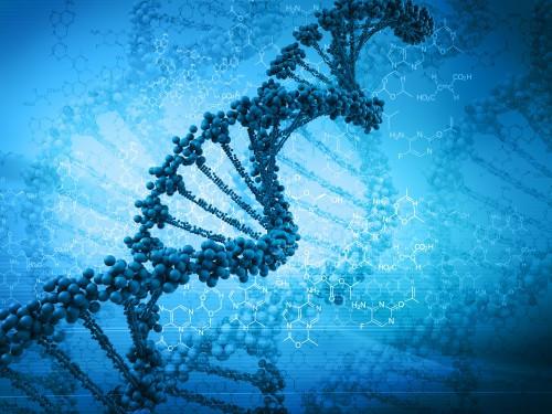 ДНК-то не е вашата съдба: Как да променим генетично заложеното, започвайки с подправка