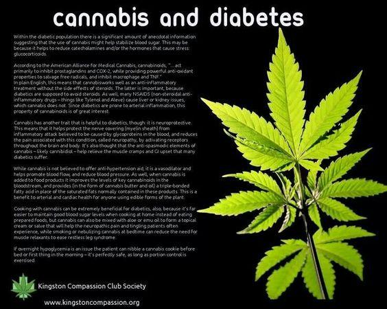 Как канабисът лекува диабет