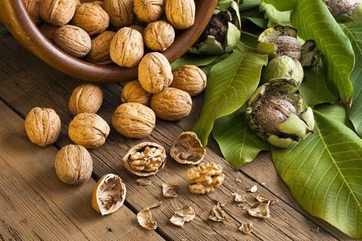 wallnuts-gut-health